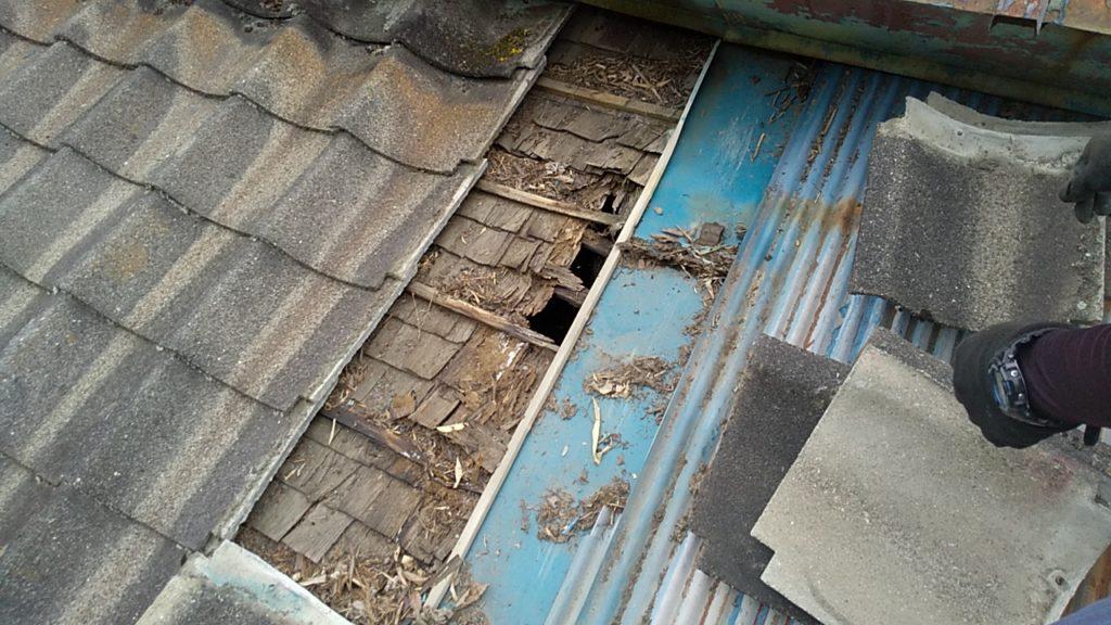 茅葺きをトタンでカバーした缶詰屋根